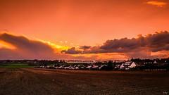 Sunrise 1304 (Ⓨ a s m i n e Ⓗ e n s +4 900 000 thx❀) Tags: leicaq leica sunrise belgium belgique belgrade orange twilight hensyasmine landscape