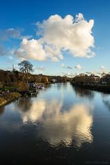 I will color you silver skies blue (OR_U) Tags: 2017 oru uk richmondpark river riverthames reflection vertical cloud blue sky judycollins london spring landscape