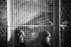 in gratings we trust (Toni_V) Tags: m2403872 rangefinder digitalrangefinder messsucher leica leicam mp typ240 35lux 35mmf14asph 35mmf14asphfle summiluxm dof bokeh hängebrücke suspensionbridge jolibach wallis oberwallis valais niedergestelngoppenstein hiking wanderung randonnée escursione bw blackwhite monochrome schwarzweiss sep2 silverefexpro2 niksoftware gitterrost switzerland schweiz suisse svizzera svizra europe ©toniv 2017 170416 grating