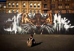 Glasgow's Tiger (buddah1888) Tags: gccmuraltrail glasgow tiger klingatron clydewalkway artpistol buddah1888 mural victim food stalkingtiger stalking art interesting iconic olympusomdem10mkii olympus people scotland vividandstriking vibrant zuiko 1442mm