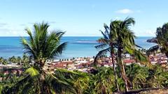 Japaratinga - Alagoas - Brasil (Antonio Marin Jr) Tags: japaratingaalagoasbrasil japaratingaalagoas brasil praia praias beach landscape paisagem antoniomarinjr travel