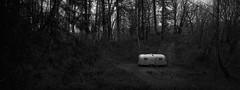 Trailer, Oregon (austin granger) Tags: trailer oregon woods clearing forest airstream hidden retreat evidence film xpan