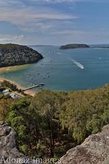 Currawong Beach - NSW - Sydney (Adolfo Nazario) Tags: currawong beach nsw sydney barrenjoey lighthouse palm