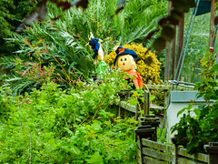 Looking Out For Crows (Steve Taylor (Photography)) Tags: scarecrow hat garden green yellow blue newzealand nz southisland canterbury christchurch flora leaves
