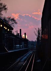 Train station sunset (marensr) Tags: sunset train tracks dusk station sun pink clouds cloud sky brownline chicago francisco