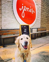 #Repost @southportgolden ・・・ Oh God, please make Dad get me a @jenisicecreams cone. (southportcorridorchicago) Tags: instagramapp square squareformat iphoneography uploaded:by=instagram southport southportcorridor chicago wrigleyville lakeview