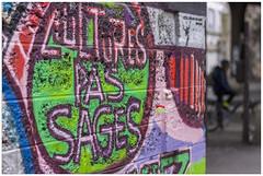 _PPD3113a (duport.patrick) Tags: paris streetart art artist urban colors paint graffiti urabain ville couleurs photographie photography famille musique lumiere light family people joy life patrick duport gosier bobigny