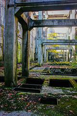 Mechanical City (RonniShae) Tags: abandoned forgotten missouri photography ivy old nature overgrown building green windows fallingapart broken