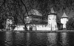 Blutenburg II (macrobernd) Tags: blutenburg monochrome monochrom sw bw burg castle münchen munich obermenzing water lake fineart fuji gfx