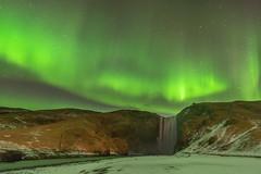dancing aurora borealis (FollowingNature (Yao Liu)) Tags: icelandphotos icelandphototrip icelandwinter icelandnorthernlights icelandwinterphotos icelandphotography iceland snow icelandphotoswinter icelandphotographylocations