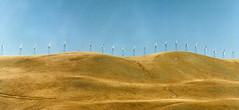 Windmills (Bill in DC) Tags: ca california 1991 film canon eos660 kodacolor smp3 napa
