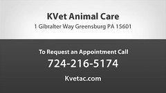 Welcome to KVet Animal Care and The Cabin Spa (kvetac1) Tags: greensburgveterinary greensburgveterinarian animals dogs cats pets animal pet petwellness surgery dentistry dental spay neuter xrays laboratory pharmacy microchipping microchips acupuncture chiropractic hospital rehabilitation massagetherapy boarding laser
