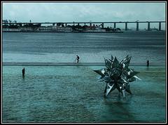 (Caro Rolando) Tags: brasil mar riodejaneiro museodelmañana museudoamanhã rio puentedeniteroi bicicleta