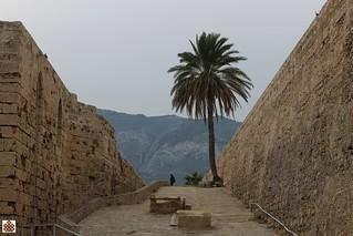 N-Cyprus031