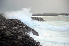 Rough Iceland (airspex) Tags: iceland arctic sea arcticsea coast shore waves surf wild