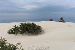 Dune di Porto Pino - Sant'Anna Arresi (Franco Serreli) Tags: sardegna sardinia panoramisardi panorami maresardo mare coste costesarde costasulcitana sabbia duna dune pino portopino sulcis santannaarresi sannaarresi dunediportopino