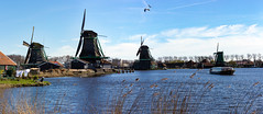 Zaanse Schans Panorama 25 March 2017 9.jpg (JamesPDeans.co.uk) Tags: mill netherlands water industry prints for sale zaanseschans roofs commerce digital downloads licence man who has everything thatch canals woodenbuildings wwwjamespdeanscouk landscape architecture windmill landscapeforwalls europe publicutilities james p deans photography digitaldownloadsforlicence jamespdeansphotography printsforsale forthemanwhohaseverything