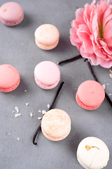 French pastel macarons (lyule4ik) Tags: macaroon sweet meringue bake cake france color cream dessert flavor almond chocolate cocoapowder delicacy different flour multicolored pistachios raspberries rotates savor spinning sugar taste vanilla bakery biscuit colorful confection confectionery cookie cuisine delicious food french gastronomy gourmet macaron pastry pink snack stack tasty traditional yellow
