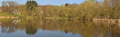 Mühlenteich Pano (nirak68) Tags: trittau schleswigholsteinkreisstormarn deutschland ger 099365 trittauerwassermühle teich landschaft 2017ckarinslinsede landscape 7dwf