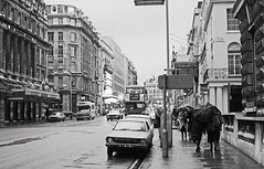 London, Haymarket. (christopherhogg1) Tags: chrishoggsphotos bus routemaster city london haymarket car motorvehicle umbrella buildings architecture streetscene theatre rain