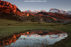 REFLEJOS DE MONTAÑA (Obikani) Tags: covadonga lagos asturias cangasdeonís españa picosdeeuropa lago lake mountain reflections light snow green amazing beauty nature landscape