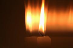 Light in the next world (Macro Monday) (Breeana_Shenae) Tags: macro monday macromondays macromonday