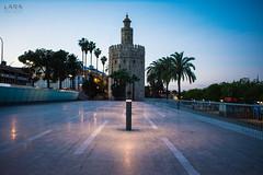 Torre del Oro (Lara Santaella) Tags: torre tower sunrise morning dawn sevilla