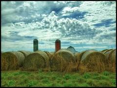 Missouri towers.... (Sherrianne100) Tags: barn haybales bales silos farm ozarks missouri