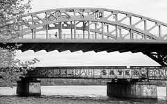 Bridges (WilliamND4) Tags: bridges flickrfriday bridge blackandwhite boston bw monochrome water person nikond750