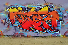 TIPOR (Di's Free Range Fotos) Tags: uk england graffiti brighton blackrock tipor