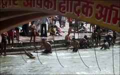 Under the Bridge (Vincentdevincennes) Tags: bridge people india colors bath streetlife holy hinduism ganga ghat haridwar khumbmela uttarakhand