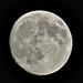 Marte y la Luna; nuestros compañeros de viaje. Entrev a los astrofísicos Daniel Marín y Manuel Jiménez. Pro. 087. lFDLC