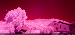 IR > second try (Ludtz) Tags: longexposure pink red mountain alps rose montagne alpes canon rouge purple altitude violet 74 ambiance sommet villard pauselongue 5dmkii canoneos5dmkii infraredseries ludtz ef1740|4l