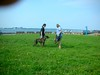CastleIslandAugust212011015