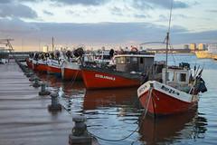 Port (laurw) Tags: ocean water port puerto uruguay boat fishing agua oceano bote maldonado puntadeleste pescando puertopuntadeleste