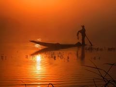 Inle Lake - Fisher in the morning light (sharko333) Tags: voyage travel boat asia asien burma olympus fisher myanmar inlelake asie birma reise e5 shanstate lakeinle nyaungshawe