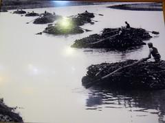 (Jennifer Hattam) Tags: river tigris dicle mesopotamia kurdistan northerniraq krq natureiraq tigrisriverflotilla