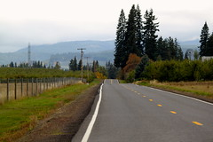 IMG_3579 (Taylor Mc) Tags: road street autumn fall oregon highway scenic mount hood farms byway