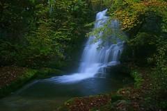 Canyon de Pissevieille, affluent rive gauche de la Bienne vers la Rixouse Jura (Guy Decreuse 25) Tags: saint canyon jura claude cascade bienne longchaumois pissevieille rixouse