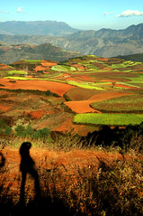 Dongchuan red earth  東川 紅土地 錦繡園 (MelindaChan ^..^) Tags: china shadow red color nature landscape colorful pattern earth mel crop plantation melinda agriculture yunnan dongchuan 雲南 紅土地 東川 東川紅土地 chanmelmel melindachan dongchuanredearth