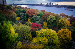 New York (ravalli1) Tags: city nyc newyork color fall nature river nikon manhattan hudson