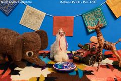 Nikon D5300 - ISO 3200 (dojoklo) Tags: camera color book nikon iso tricks howto tips use setup guide manual dslr noise ebook learn beginner highiso intermediate quickstart digitalnoise d5300 setupguide recommendedsetting nikond5300