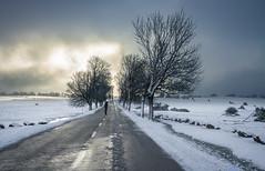 La carretera, la nieve y Carla (eladioaires) Tags: