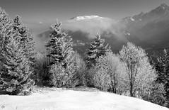 The Magic of The Wintersmith (Dave Snowdon (Wipeout Dave)) Tags: winter blackandwhite snow mountains alps ice landscape panasonic chamonix frenchalps leshouches rhonealps montblancmassif lumixdmctz6 wipeoutdave djs2013 davidsnowdonphotography