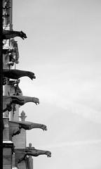 paris 9 (ondey) Tags: paris france church de europe cathedral gothic medieval notredame gargoyle cathédrale notre dame francie kostel evropa katedrála paříž chrám gotika středověk chrlič