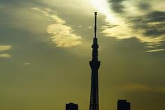 (ddsnet) Tags: camera new sunset sky cloud sun japan sunrise lens tokyo sony experience  resolution  nippon    nihon ilc         7r interchangeable camera tkyto mirrorless   tokyoskytree  emount  interchangeablelenscamera  to tky 7r ilce7r interchangeable