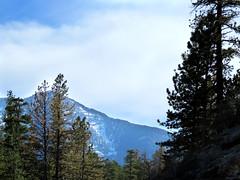 Lee Peak (Gem Images) Tags: winter usa ski sport lift nevada trails charleston area snowboard runs mtcharleston slope mountan skilasvegas leepeak