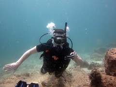 IMG_9083 (milewski) Tags: ocean me water underwater salt bubbles scuba diving rob scubadiving diver saltwater breathing underwaterphotography airbubbles scubadiver oceanphotography