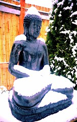 Covered in snow, natural ushnisha, a concrete statue of Amitabha Buddha, the brave lion among men, meditating, bamboo fence, tree, drips of water, lotus base, A Garden for the Buddha, Seattle, Washington, USA (Wonderlane) Tags: seattle usa tree washington meditating selfrealization bamboofence 1381 amitabhabuddha coveredinsnow dripsofwater lotusbase agardenforthebuddha {vision}:{outdoor}=0873 aconcretestatueofamitabhabuddhameditating aconcretestatueofamitabhabuddha thebravelionamongmen naturalushnisha