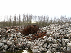 Petroleum-Zuid (LHOON) Tags: abandoned belgium belgique decay belgi disused antwerp petrol derelict antwerpen petroleum